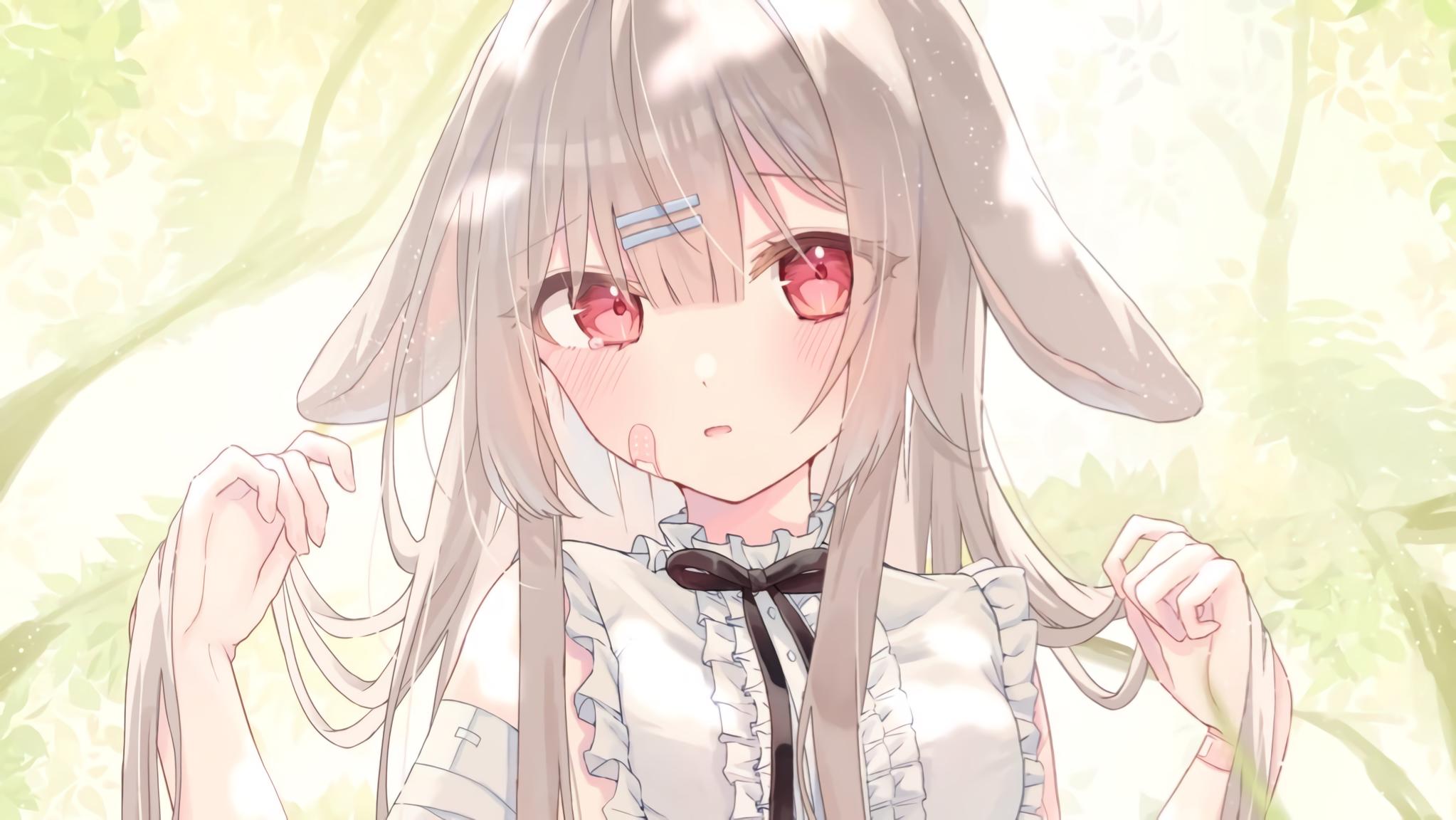 Anime Girl 2046x1152
