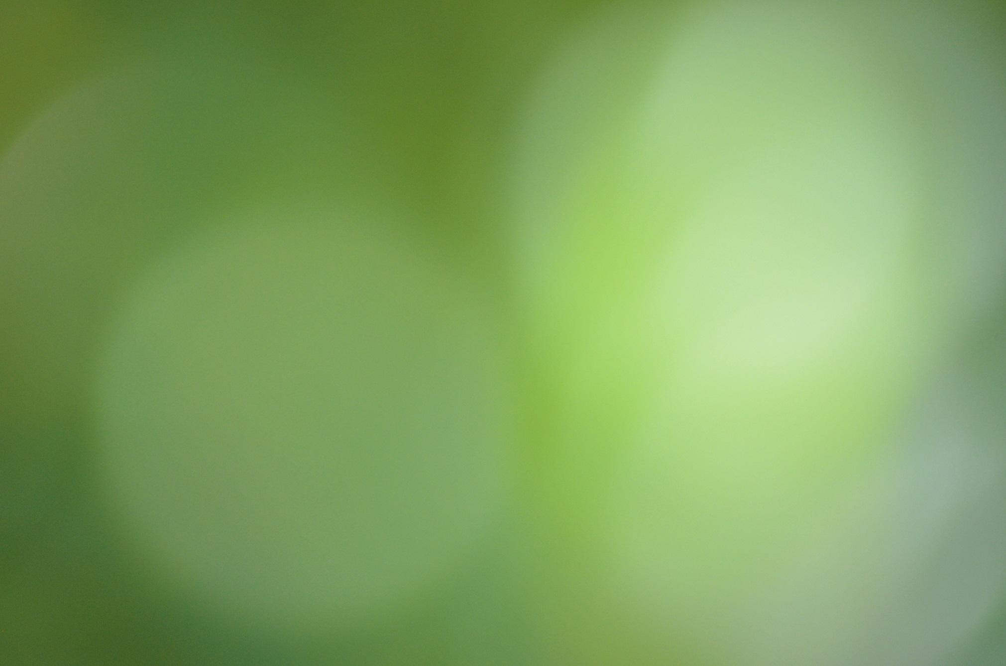 Circle Gradient Green Light 2021x1339