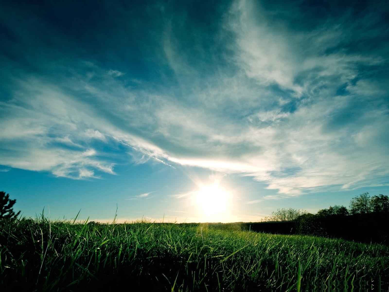 Earth Grass 1600x1200
