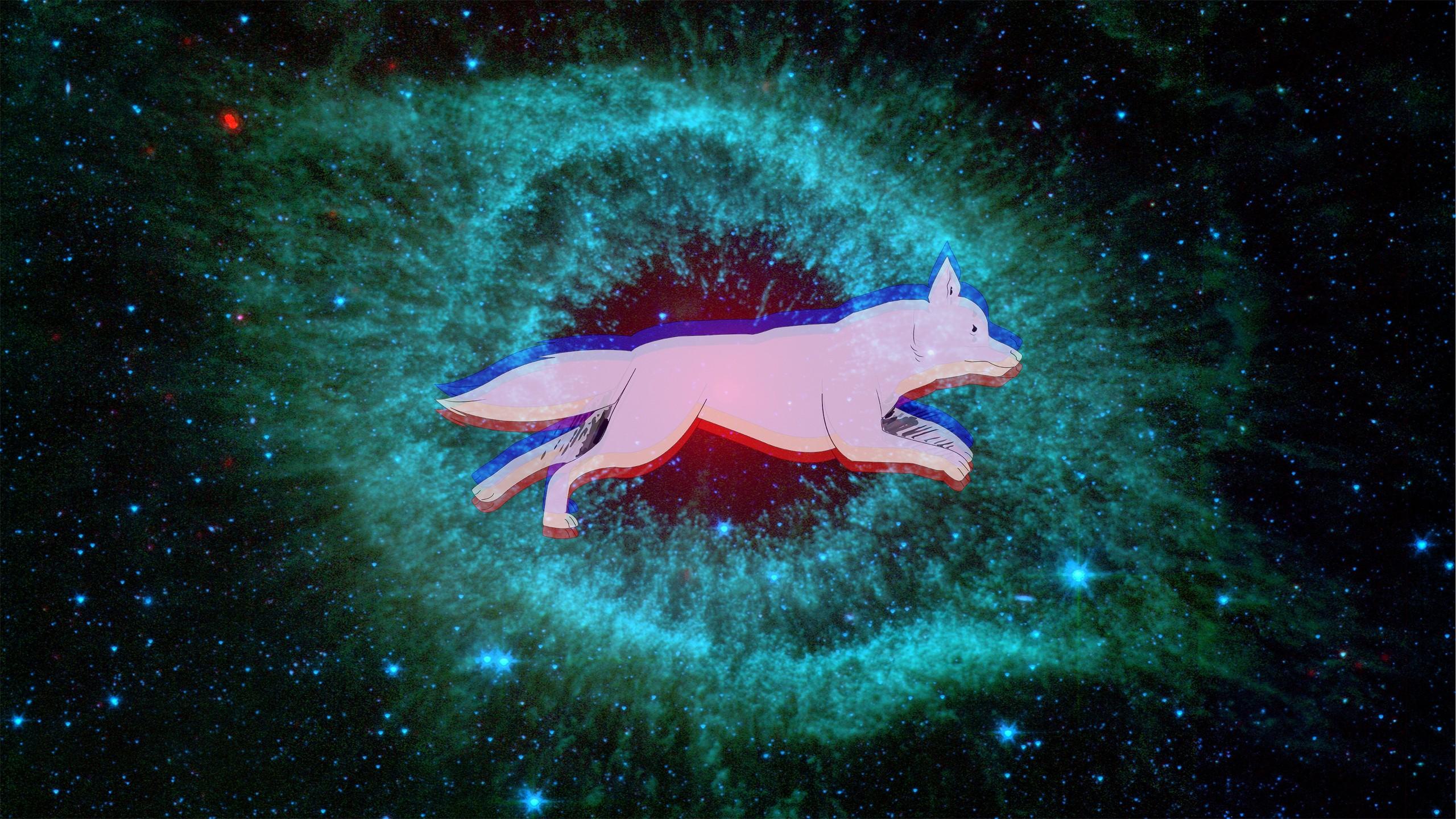 Space Dog Helix Nebula 2560x1441