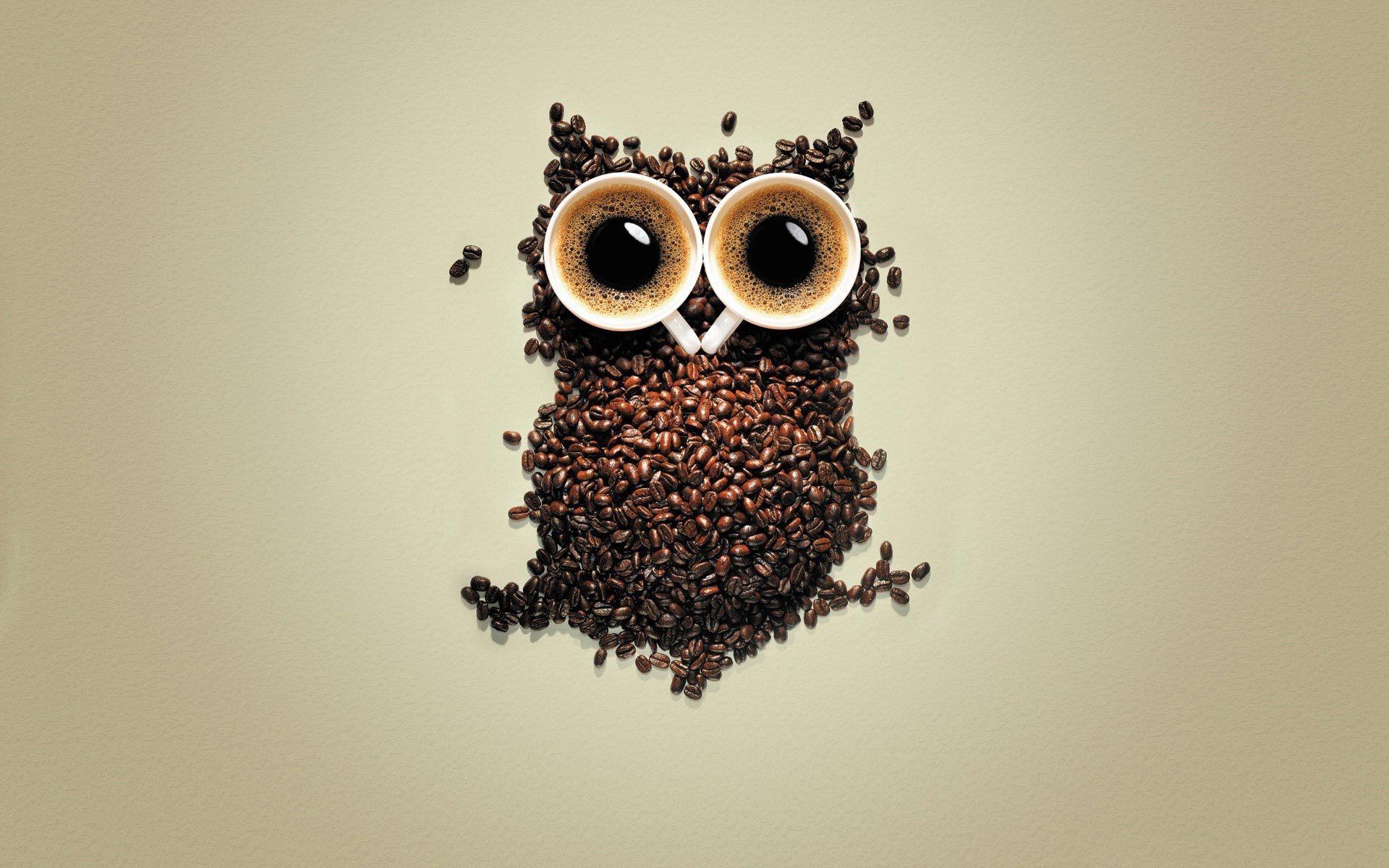 Coffee Funny Owl Artistic Coffee Beans 1920x1200