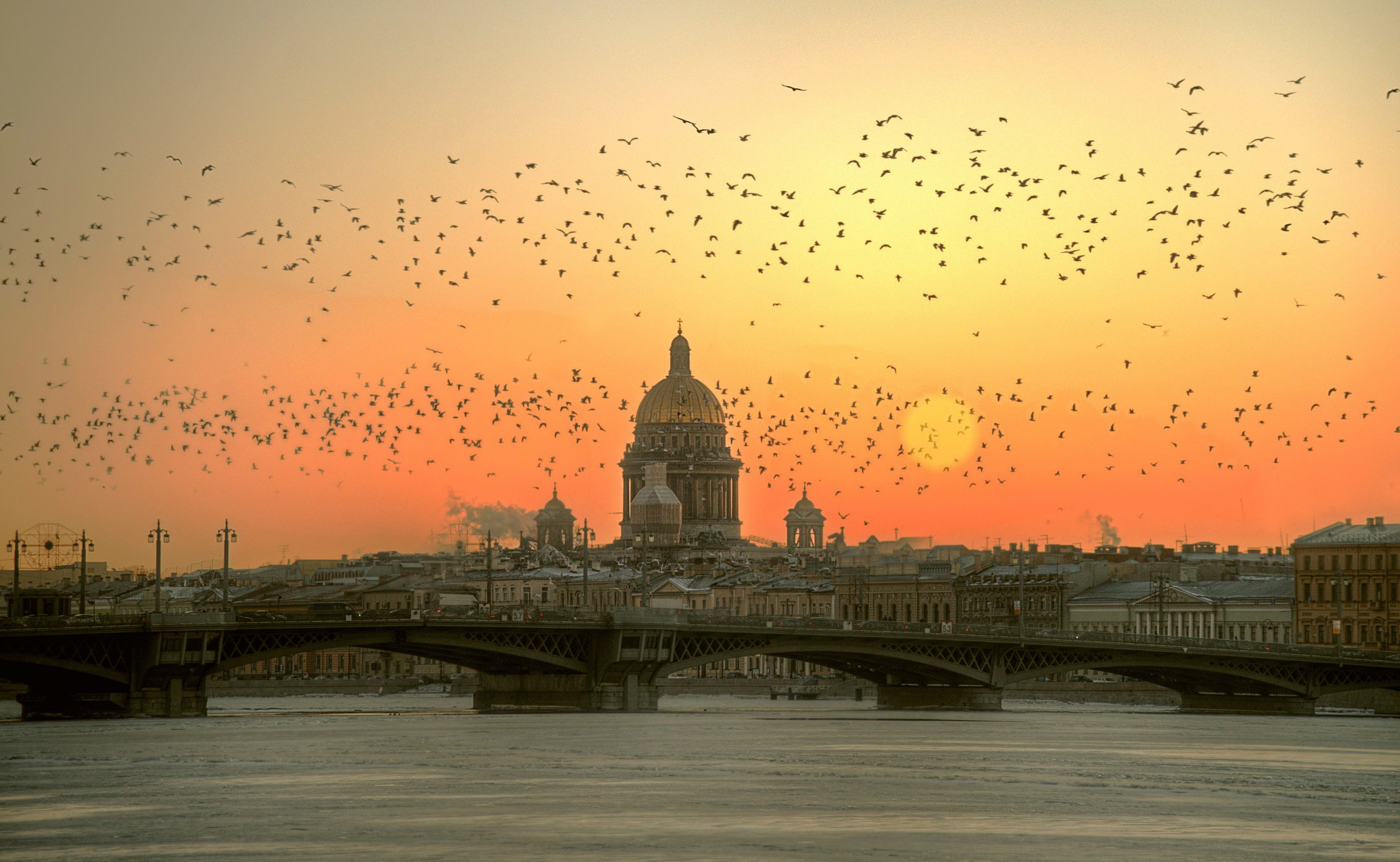 Saint Petersburg Russia Winter Bird Sun Morning Bridge 2048x1261