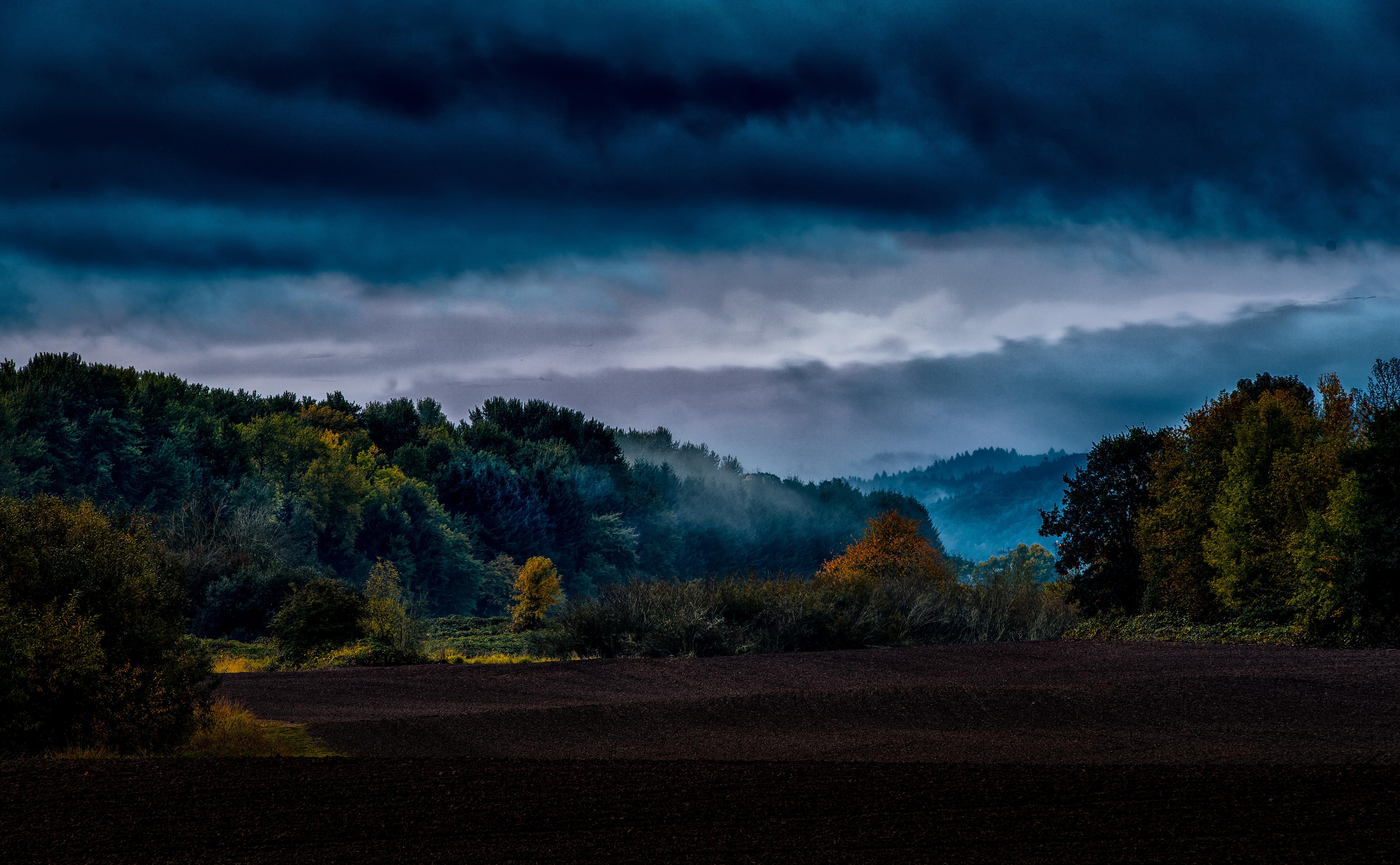 Fall Oregon Island Forest 6496x4012