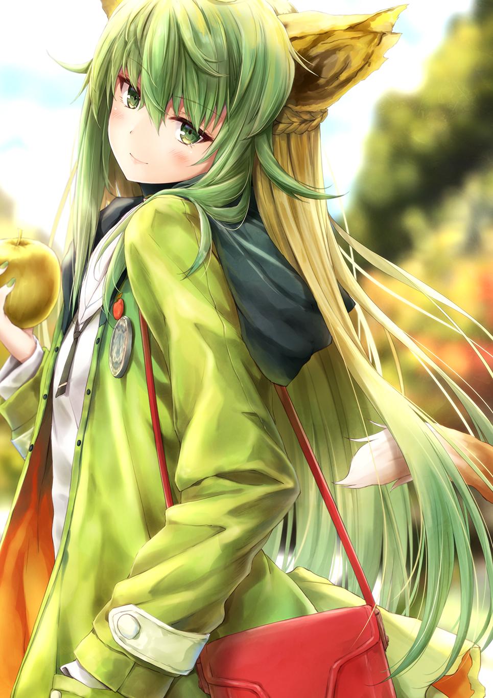 Fate Series Fate Apocrypha Anime Girls Green Hair Animal Ears
