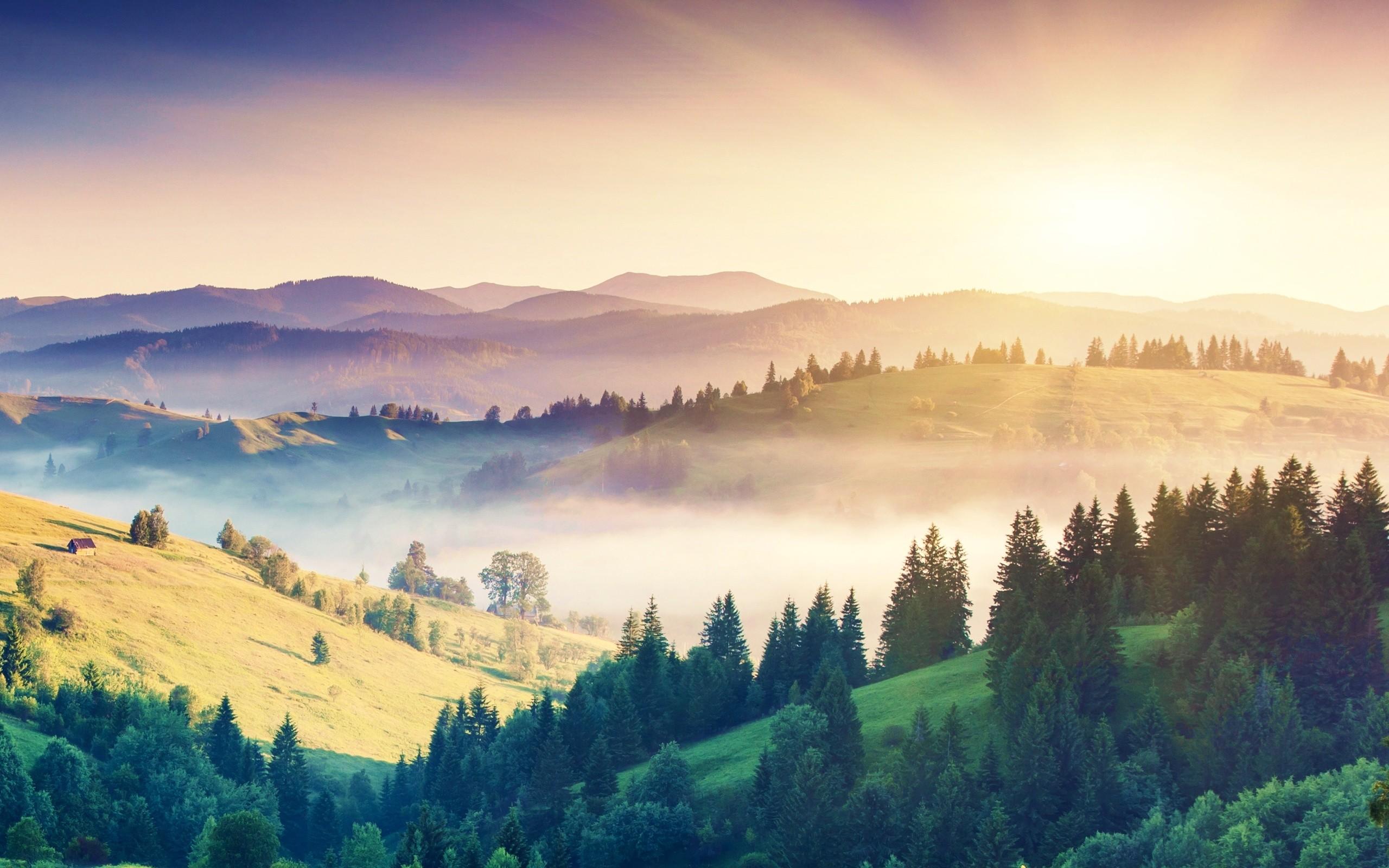 Earth Landscape 2560x1600