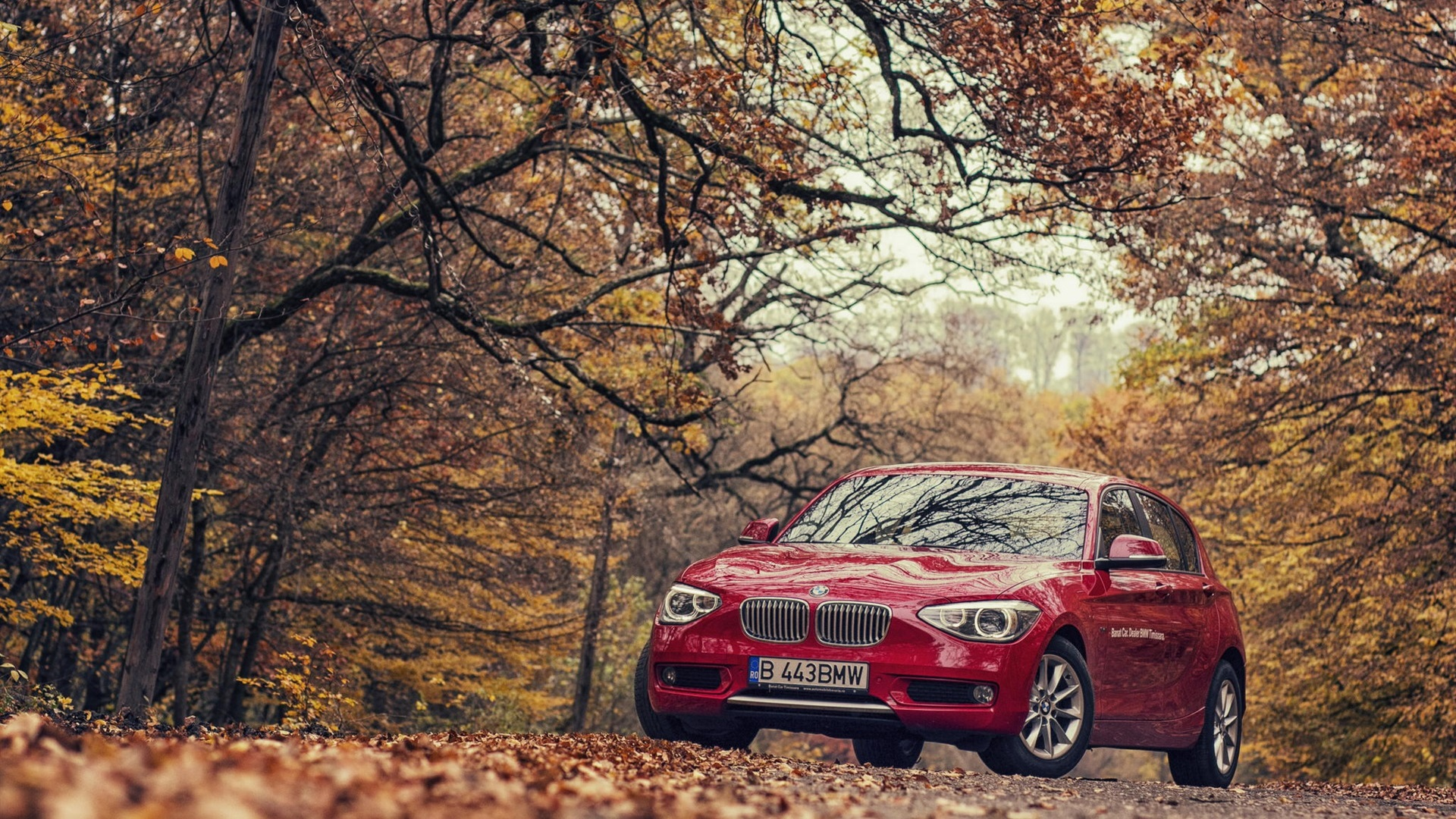 BMW Road Red Cars Trees Nature BMW 1 Fall 1920x1080