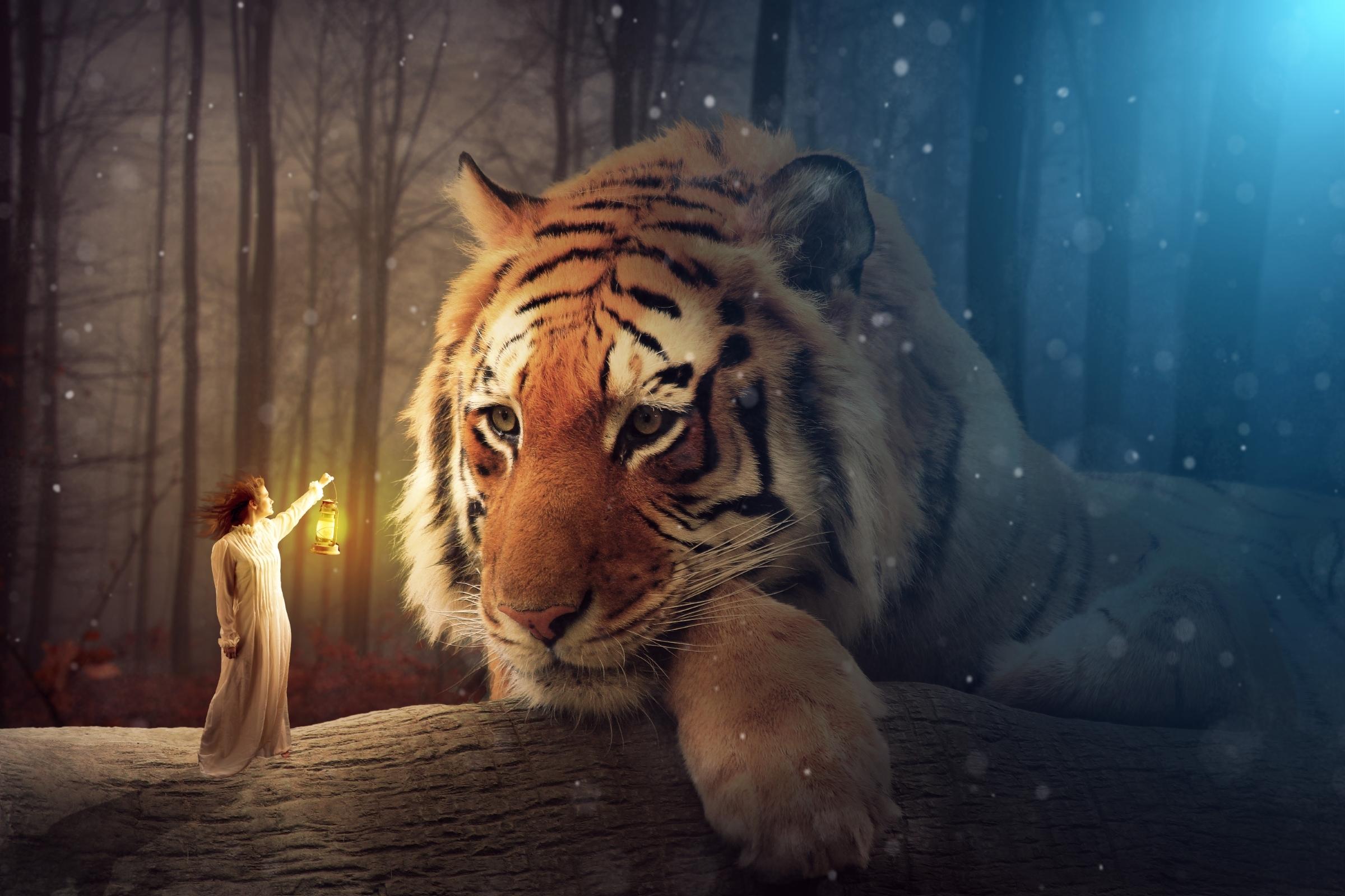 Forest Tiger Girl Lantern 2400x1600