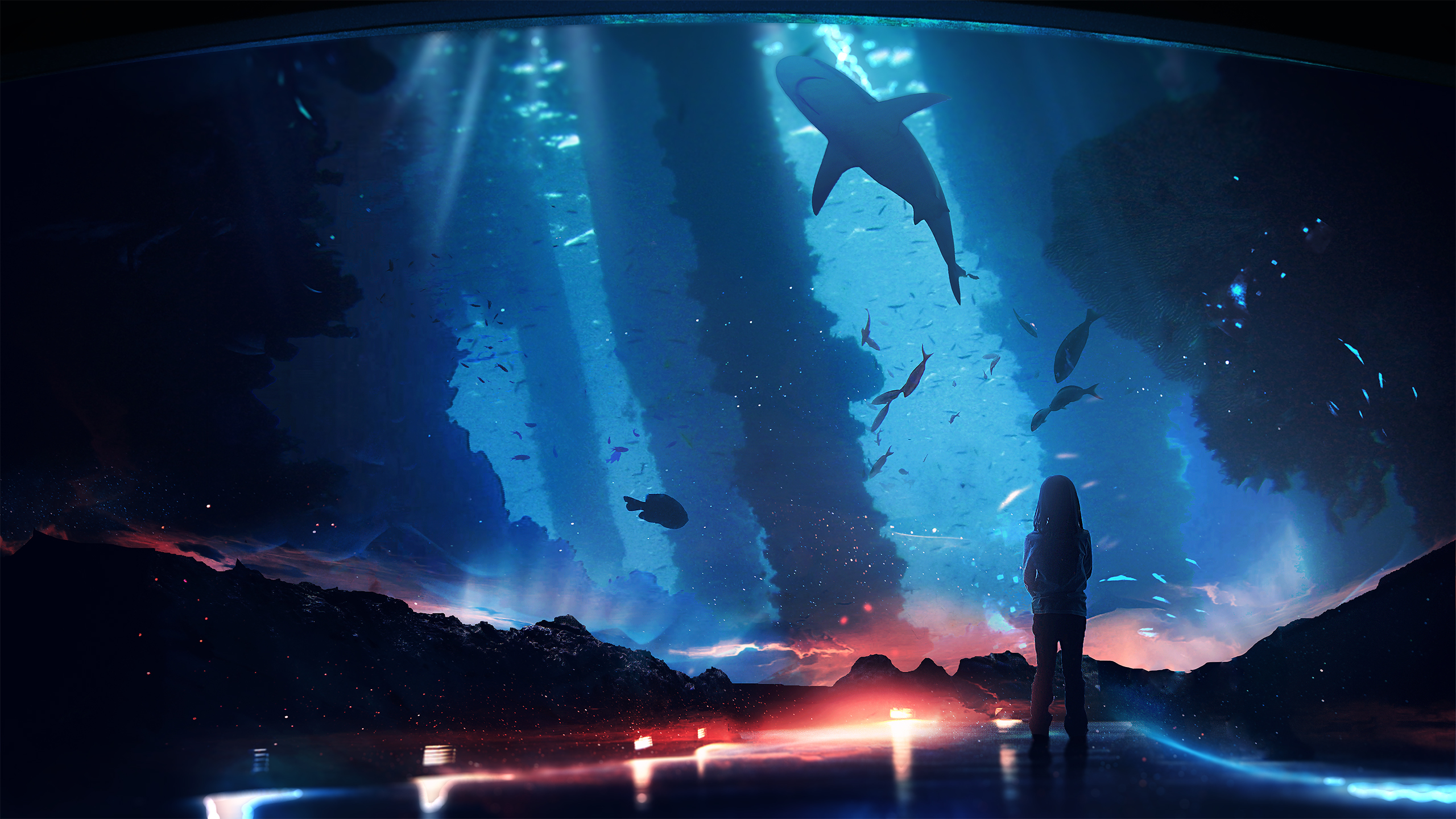 Aquarium Child Shark 2560x1440