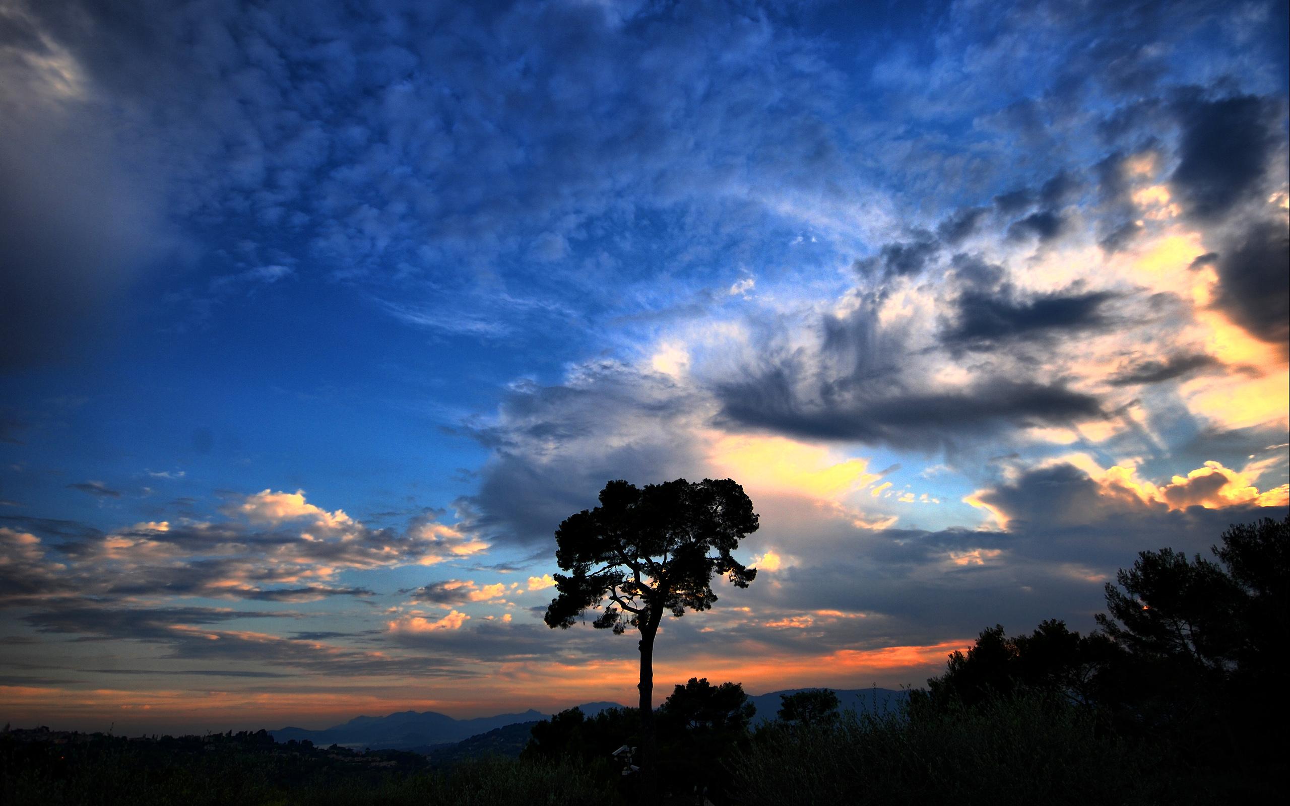Blue Cloud Colors Sky Sunset Tree 2560x1600