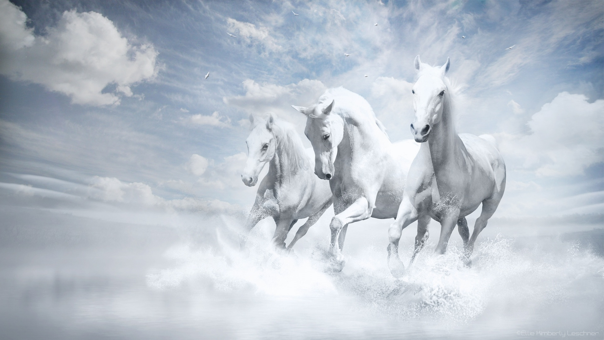 Fantasy Horse Running White Wallpaper Resolution 1920x1080 Id 857405 Wallha Com
